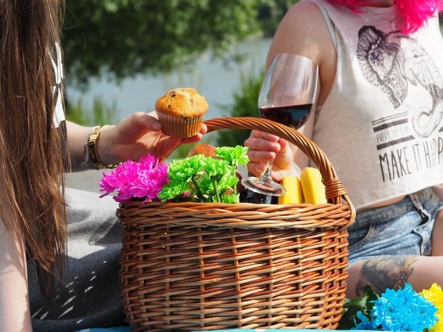 picnic-1456955_960_720.jpg
