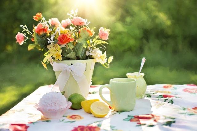 summer-still-life-783347_960_720.jpg